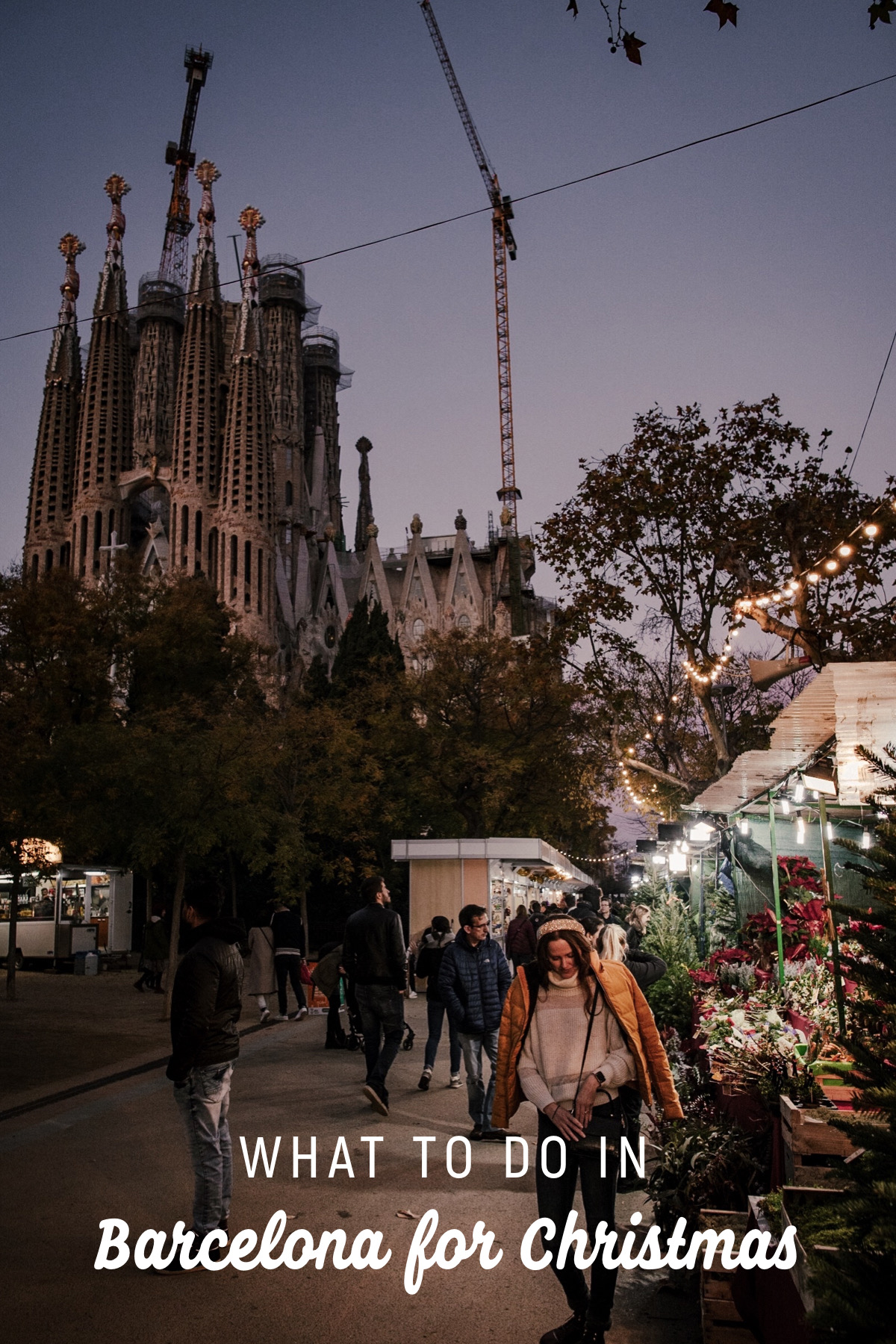Find out what to do in Barcelona for Christmas. Discover the best christmas markets and Catalan traditions for Christmas.