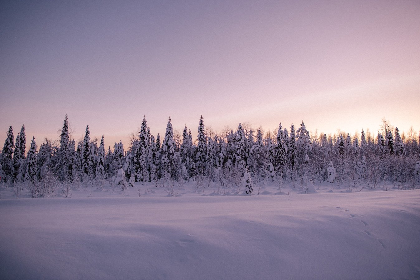 The Best Winter Activities In Lapland Finland