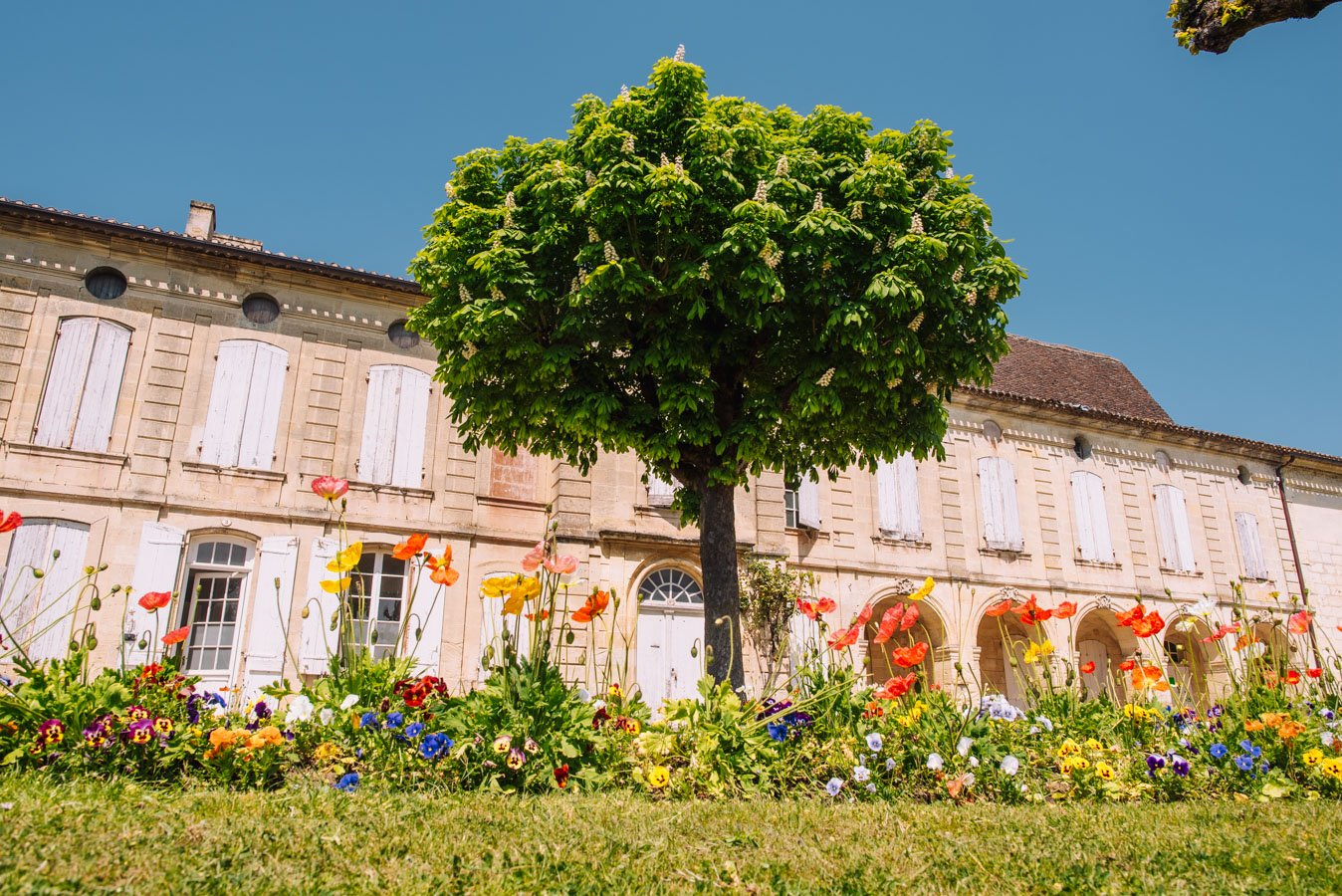 Exploring the Bordeaux wine region