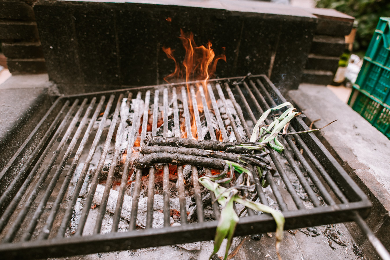 cooking calcots on a coal bbq