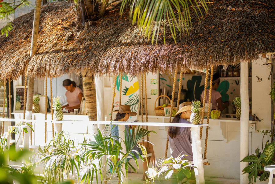 Matcha Mama is a beautiful cafe in Tulum for healthy food and drinks