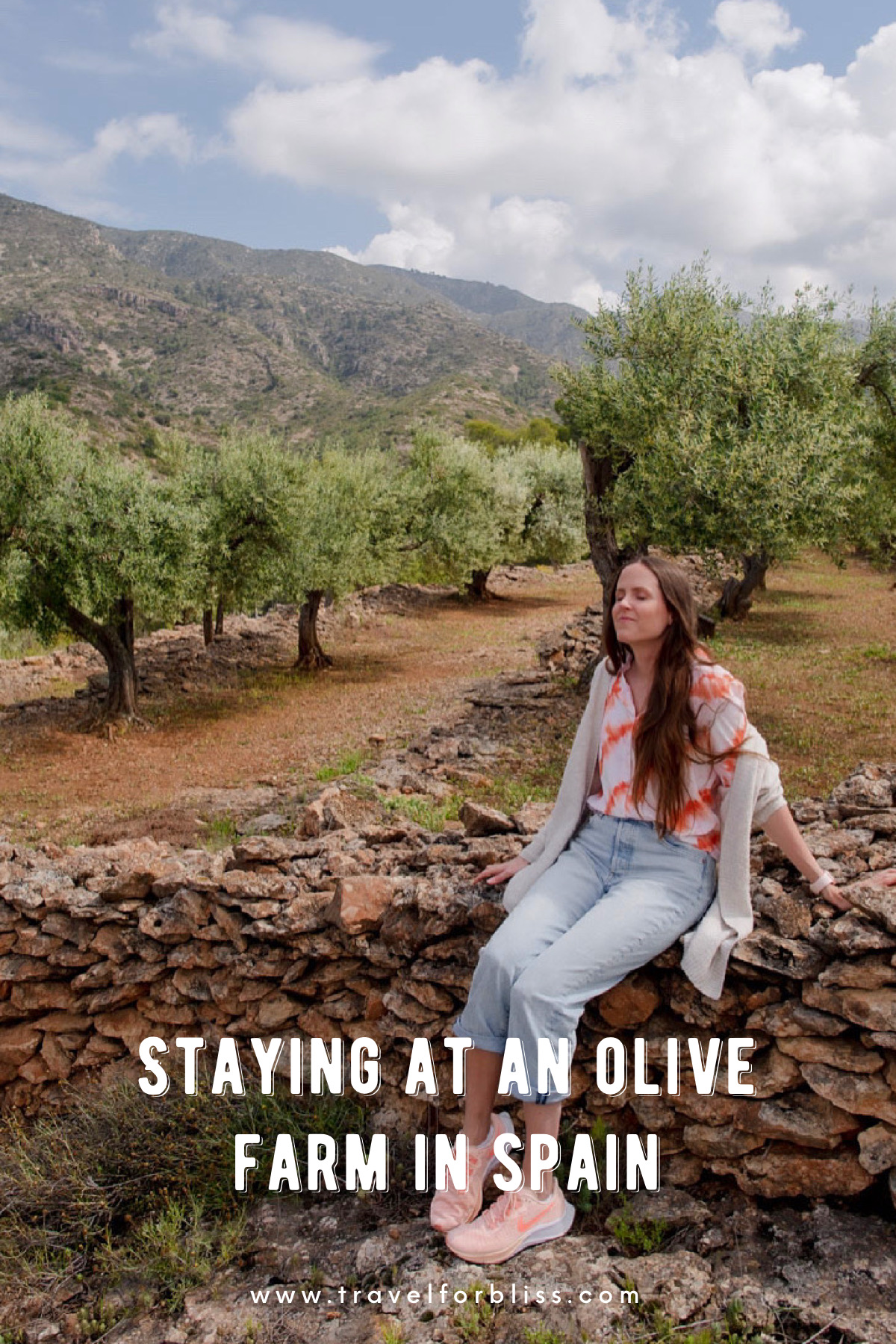 Staying at an olive farm in Spain